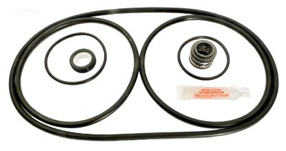 APCK1046: CHALLENGER REPAIR KIT APCK1046